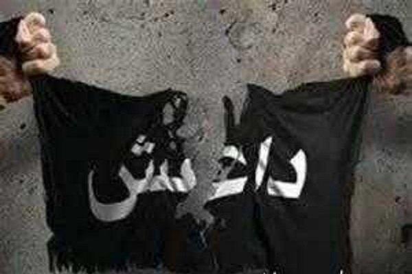 داعشی ها خطری برای استان دیالی محسوب می شوند