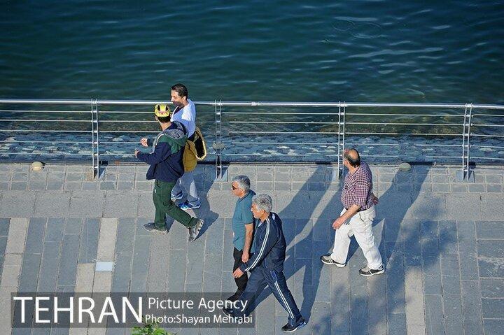 پیاده مداری در ایران به عنوان یک شیوه حمل و نقل به رسمیت شناخته نمی گردد